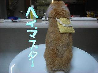マスター☆
