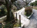 tetsugakunomichi_20090308_06.jpg