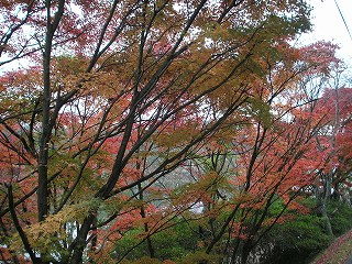 fukuchiyama08-2.jpg