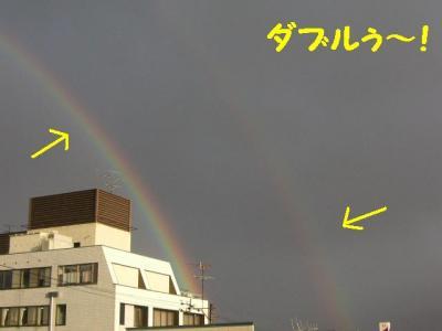 1125-7.jpg
