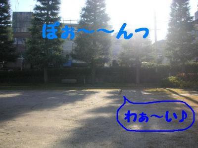 122-9.jpg