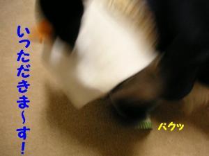 200911-4.jpg