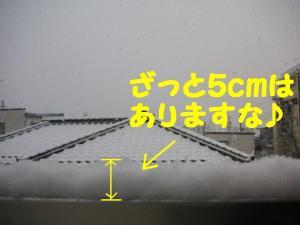 2009112-2.jpg