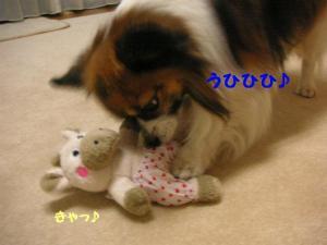 2009224-5.jpg