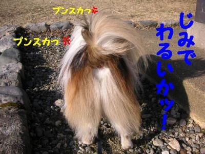 200927-18.jpg