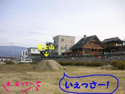 2009317-9.jpg