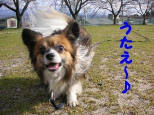 2009326-12.jpg