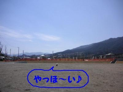 2009413-1.jpg