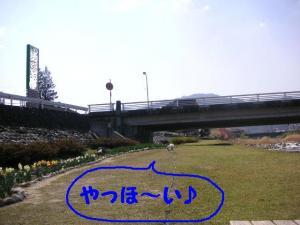 2009413-4.jpg