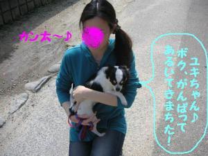 2009416-27.jpg