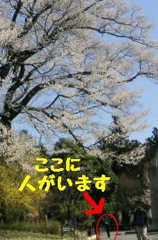 200942-3.jpg