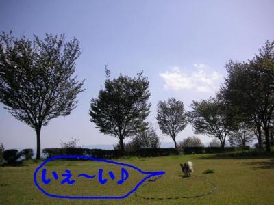 2009422-1.jpg
