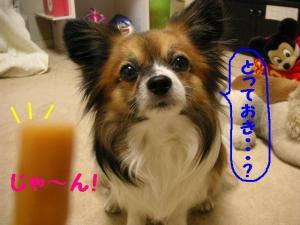 200945-10.jpg