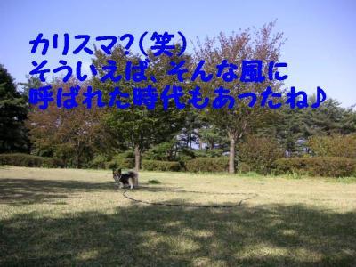 200951-1.jpg