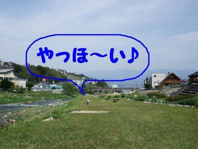 2009512-2.jpg