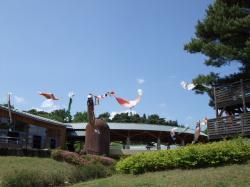 2009514-14.jpg