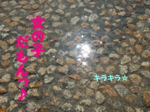 2009514-37.jpg