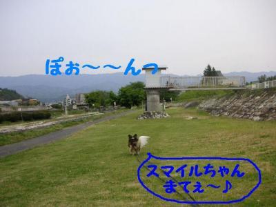200955-3.jpg