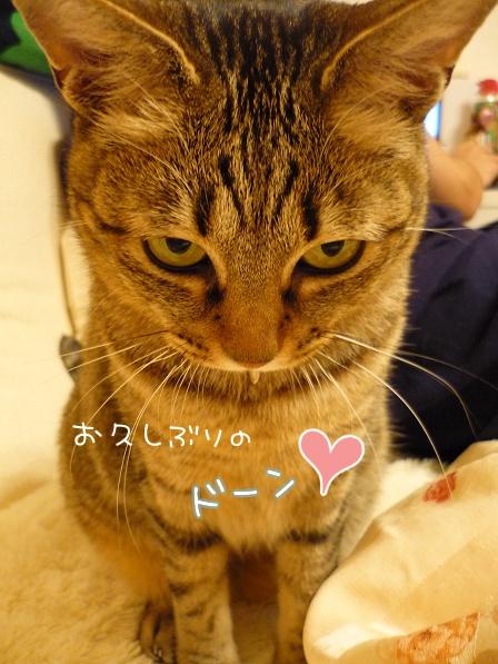 09_10_25_01.jpg