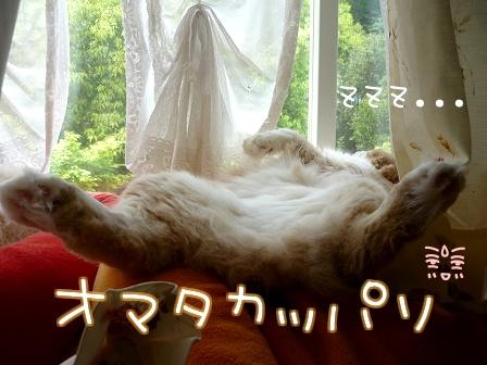 09_10_25_02.jpg