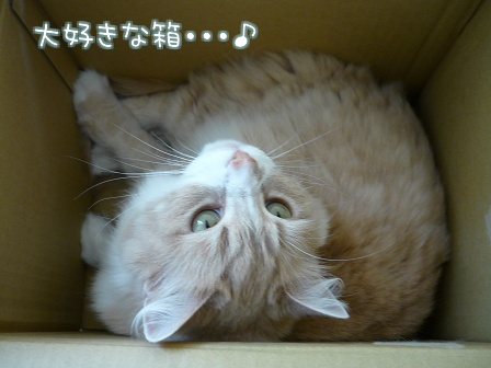 09_10_26_01.jpg
