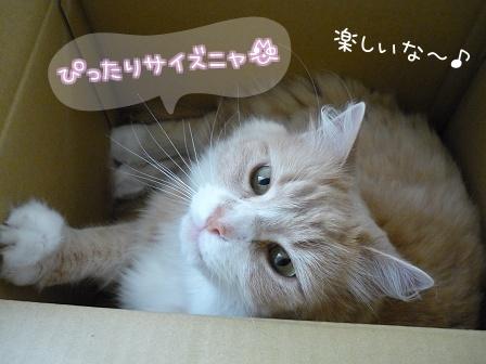 09_10_26_02.jpg