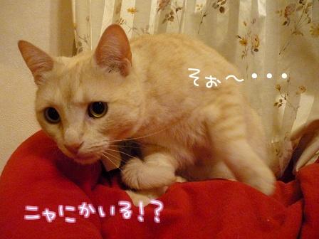 09_10_26_03.jpg