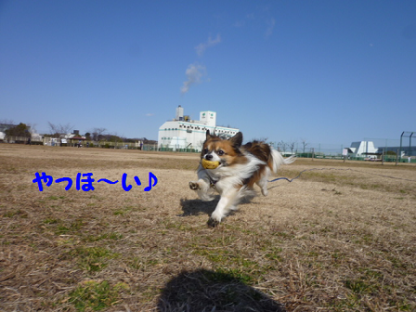 2011225-2.png