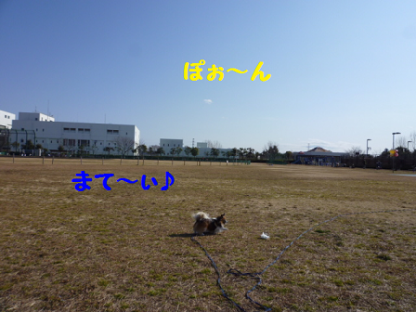 2011225-5.png