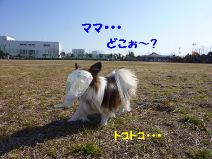 2011225-8.png