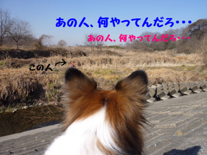 2011226-3.png