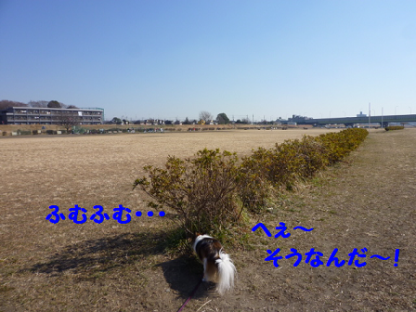 2011226-8.png