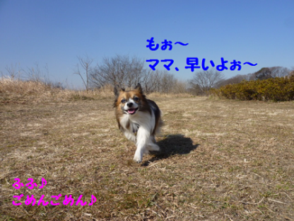 2011226-9.png