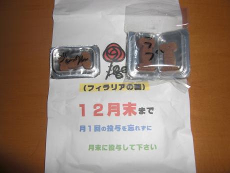 CIMG2411_convert_20090530211243.jpg