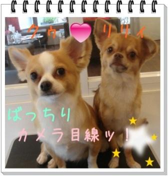 クウ&リリイ1