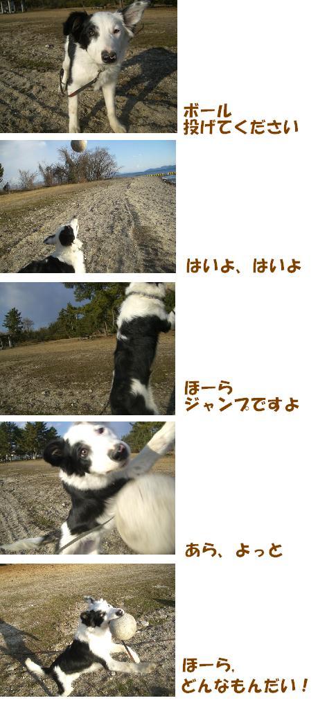 CIMG8985w.jpg