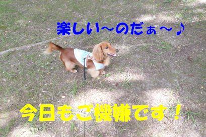 おっきな公園(2)