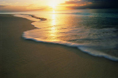 beaches_6.jpg