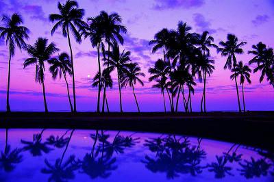 beaches_7.jpg