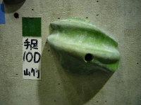 sumP1000350.jpg