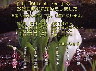 tabi_tv.jpg