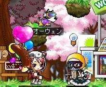 Maple091112_ぽんちゃん