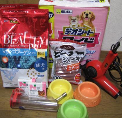 IMG_5579_convert_20100129163235.jpg