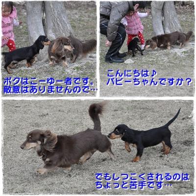 20110306-8.jpg