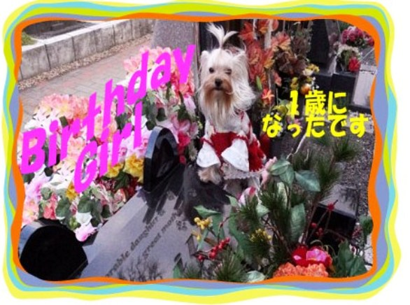 001_20120228053608.jpg