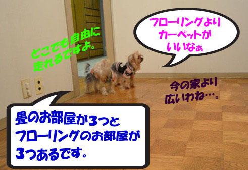 02_20111230015344.jpg