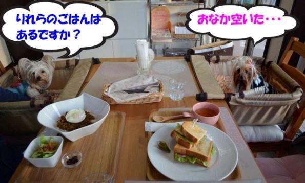 04_20111230015311.jpg
