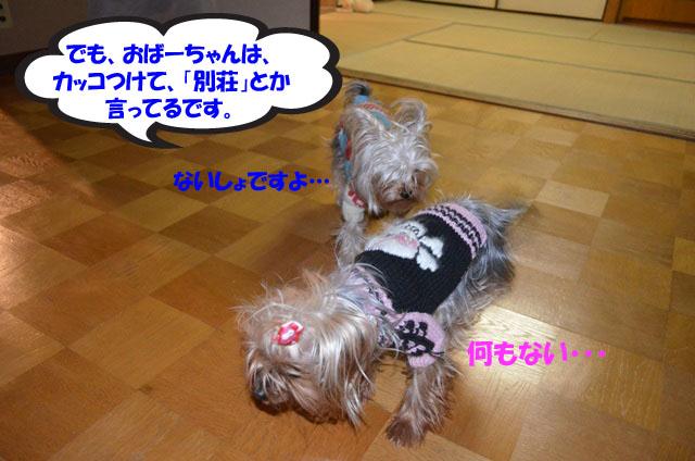 04_20111230015344.jpg