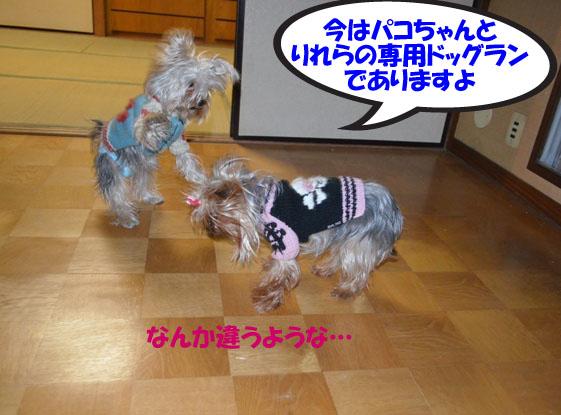 05_20111230015344.jpg
