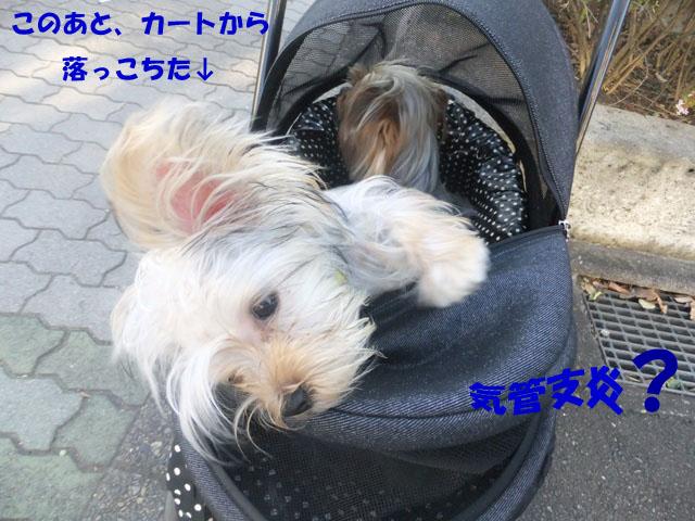 08_20110910020401.jpg